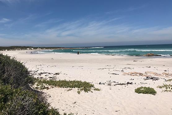 Cape4_Cape Sands