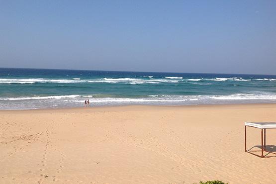 Moz4_Moz Beach