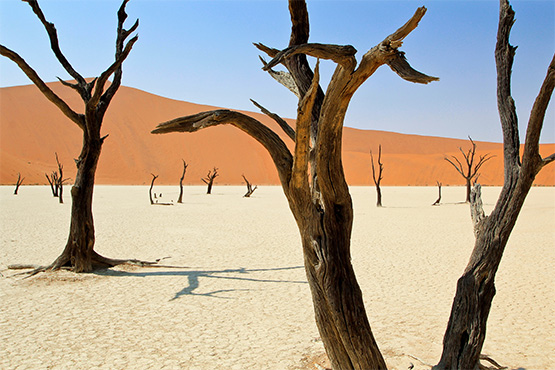 Namibia6_Dead Vlei